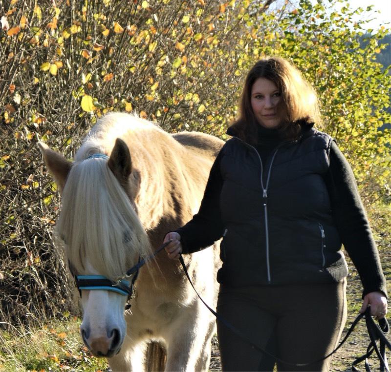 Pferdetraining Hinterland Header